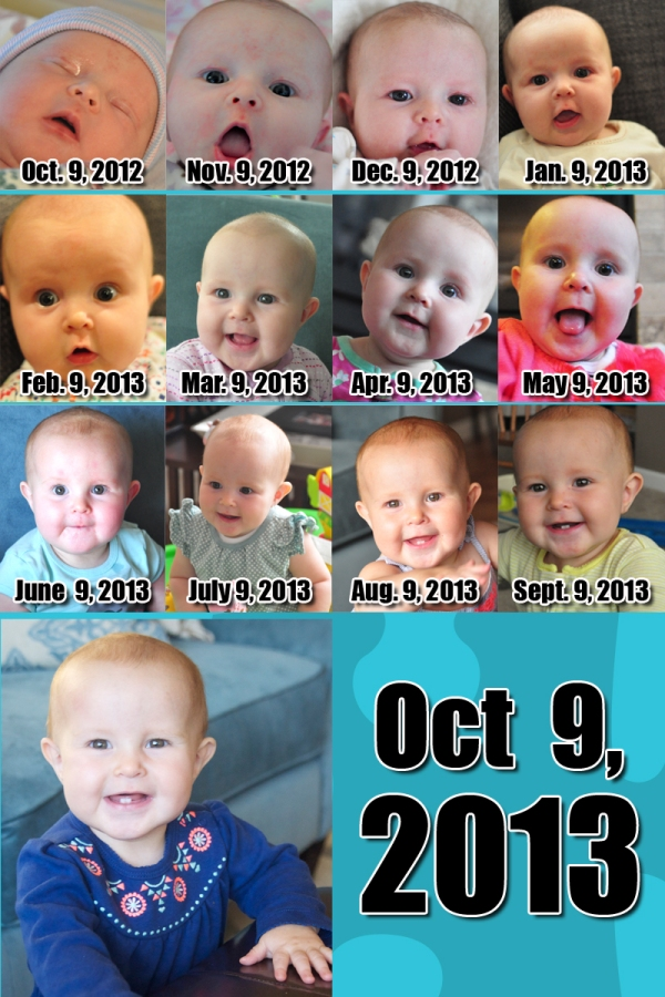 Elia 12 Months