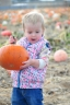 Ezra Elia Pumpkin Patch 2014-5