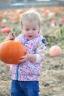 Ezra Elia Pumpkin Patch 2014-5