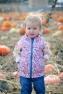 Ezra Elia Pumpkin Patch 2014-7