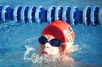 Ezra Swim Meet Small-1