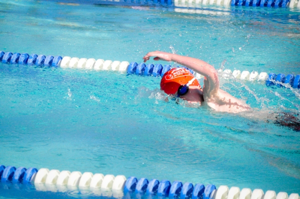 Ezra Swim Meet Small-6