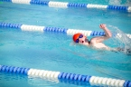Ezra Swim Meet Small-7