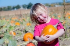 Ezra and Elia Pumpkin Patch 2015-7